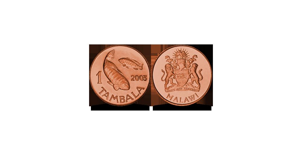 1 Malavio tambalas