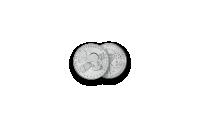 """Autentiškų monetų rinkinys """"Kosmoso užkariavimas""""10"""