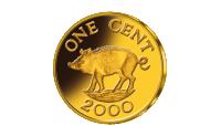 Kiaulės moneta